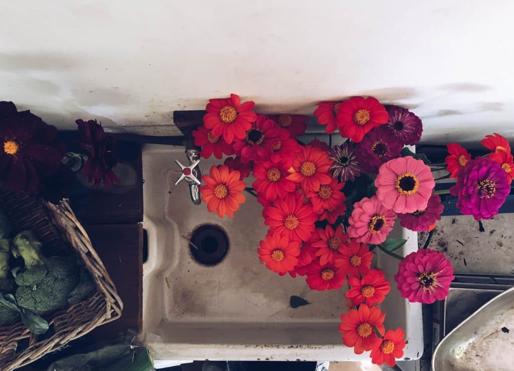 Bright orange flowers in a rustic sink The Ethicurean, Bristol