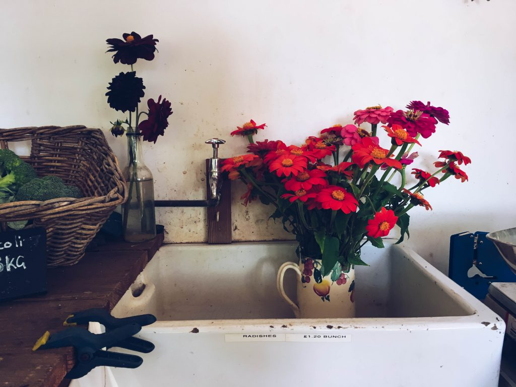 Beautiful orange flowers in a rustic sink at The Ethicurean near Bristol