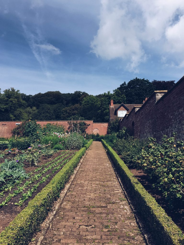 Blue sky above the walled garden at The Ethicurean, Bristol